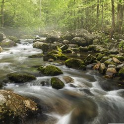, S Curve In The Smokies, Landscape, $472