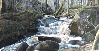 Artist: Bernt Johanson - Title: kvill river - Medium: Acrylic Painting - Year: 2010