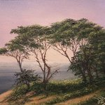 Pacific Grove By Joseph Porus