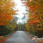 ROAD LESS TRAVELED By Jill Sneidman