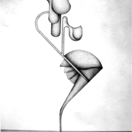 Juan Pablo Cima Artwork fecundidad, 2009 Pencil Drawing, Abstract Figurative