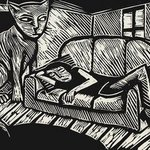 Cat and Sofa By Julian Dourado