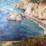 Point Lobos By Julie Van Wyk