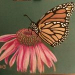 Monarch at Rest By Karen Bernard