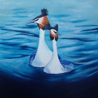 Kees Van Eyck: 'amore acqua dolce', 2017 Acrylic Painting, Birds. Artist Description: a couple of great crested grebes...