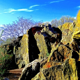 Ken Lerner: 'central park glaciated rock 1a', 2018 Color Photograph, Landscape. Artist Description: Central Park - Glaciated Rock 1a is a view of the rocks in Central Park left by receding glaciers of the ice age. This is a limited edition print number 1 of 10- signed , numbered, and dated upon purchase...