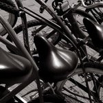 Bicycles  By Greg Spohn