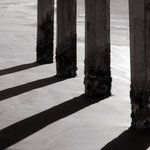 Pier Pilings By Greg Spohn