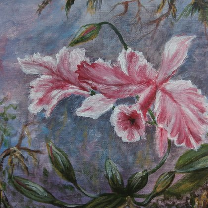, The Orchid, Landscape, $525