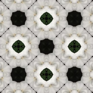 Kimi Nishikawa Artwork White Flower Repeat, 2012 Other Photography, Abstract