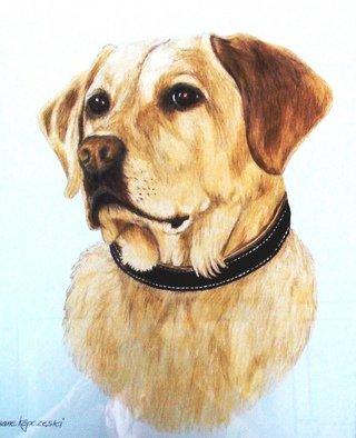 Diane Kopczeski Artwork Duke, 2009 Pencil Drawing, Dogs