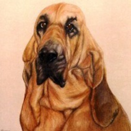 Diane Kopczeski Artwork Hannah, 2010 Pencil Drawing, Dogs
