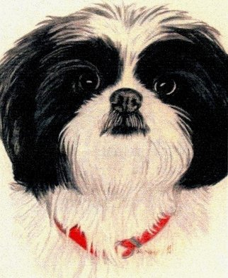 Diane Kopczeski Artwork Missy, 2010 Pencil Drawing, Dogs