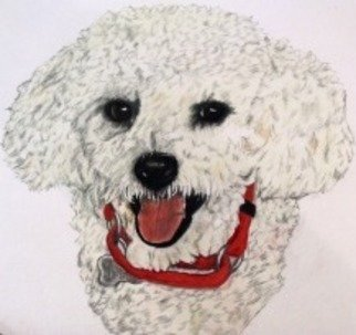 Diane Kopczeski Artwork Riley, 2011 Pencil Drawing, Dogs