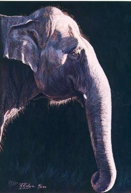 Kay Ridge  'Gentle Giant', created in 2001, Original Reproduction.