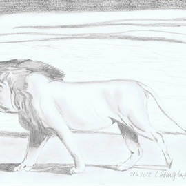 lion  By Claudia Luethi Alias Abdelghafar