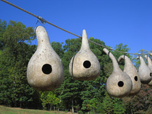 K Baker  'Bird House Gourds', created in 2008, Original Photography Color.