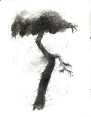 Nature Charcoal Drawing by Lalit Pant Title: nature, created in 2008