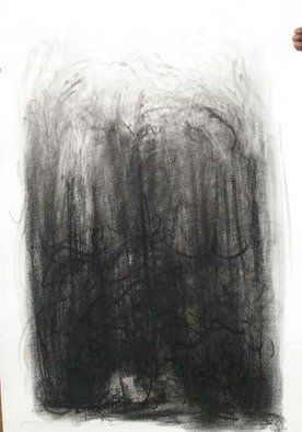 Nature Charcoal Drawing by Lalit Pant Title: nature2, created in 2008