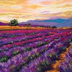 mountain lavender By Mary Jane Erard