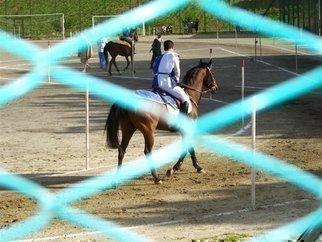 Luise Andersen Artwork ACQUASPARTA   HORSES  Two, 2006 ACQUASPARTA   HORSES  Two, Other
