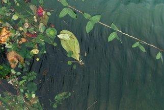 Luise Andersen Artwork AUTUMN POOL III, 2007 AUTUMN POOL III, Other