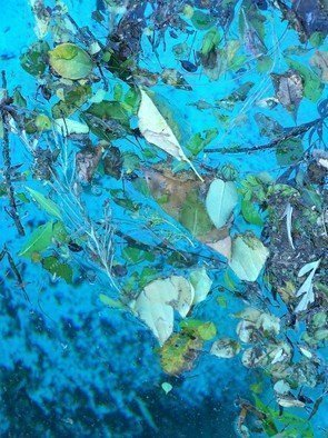 Luise Andersen Artwork BLEU IV, 2010 Color Photograph, Other