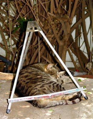 Luise Andersen Artwork EASELTIGER, 2007 EASELTIGER, Cats