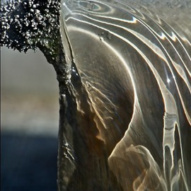 Luise Andersen Artwork Fountain I AUGUSTTENTWOOTHRTN, 2013 Color Photograph, Abstract
