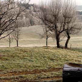 GERMAN Travels  Passau Area  Roadside Hues Of Winter