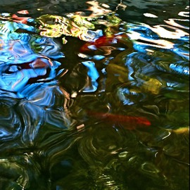 Luise Andersen: 'Goldfish Pond VII ', 2015 Color Photograph, Abstract. Artist Description:  . . invitation for a lunch. . and enjoyed very much. . specially too. . with the overture of a beautiful enchanting garden. . with waterfalls and ponds. . old goldfish i know since years. . never thought, they get as old. . hmmmaEUR|took a series . . 200 I think. . will upload several. . the abstractness in water  ...