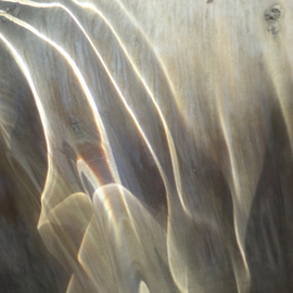 Luise Andersen Artwork Of WATER AND LIGHT VIII, 2013 Color Photograph, Abstract