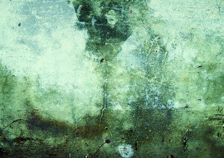 Luise Andersen Artwork SOUL JOURNEY I, 2011 Color Photograph, Abstract