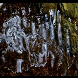 Luise Andersen: 'Series Abstract Photography POND MIG II', 2013 Color Photograph, Abstract. Artist Description:  . . found knights in armor on horses. . riding with the flag. . maidens in rivers bathing. . or in gowns and helmets with kings. . found queens too. . . what a remarkable journey eyes and mind. . heart has taken. . . was in dire need of. . . my head. . needed to clear of overload. . . need the ...