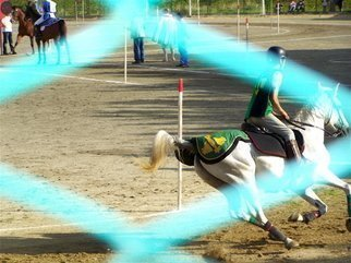Luise Andersen Artwork THE GOOD BYE HORSE   ACQUASPARTA MEDIEVAL FESTIVAL, 2006 THE GOOD BYE HORSE   ACQUASPARTA MEDIEVAL FESTIVAL, Other