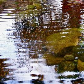 Luise Andersen: 'The POND I', 2013 Color Photograph, Abstract. Artist Description:  February 10,2013- - . . together with dear friends at Painter Tony Radcliffe's Residence. Enjoyed having pre- view of his latest collection. . and the so rare opportunity of capturing images in his Garden. . where the waterfalls are. . and the Pond. . . . . . Light and her fascinating illusions . . . my eyes entranced. . .* * size ...