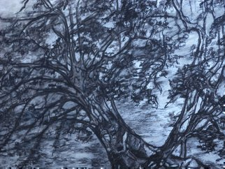 Abstract Charcoal Drawing by Luise Andersen Title: Tree of Hearts, created in 2013