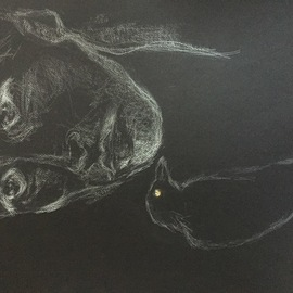 untitled feel on black paper