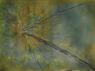Leandro Arruda: 'the forest', 2013 Pastel, Abstract Figurative. Artist Description:         dry pastel abstract art          ...