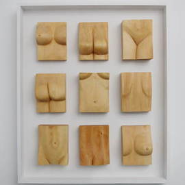 Lee Forester: 'nicole in pieces', 2019 Wood Sculpture, Nudes. Artist Description: Based on a live model in my studio, I carved this wall- hung sculpture from nine blocks of English Lime- Wood and mounted them in a painted plywood frame. The nine individual carvings are not permanently fixed to the frame so the arrangement of the pieces can be ...