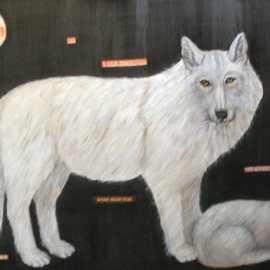 Rita Levinsohn: 'Aerial Hunting', 2009 Acrylic Painting, Activism. Artist Description:  Painting portrays wolves that are being murdered in Alaska. ...