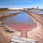 Salt Pan at Coega By Lez Dor