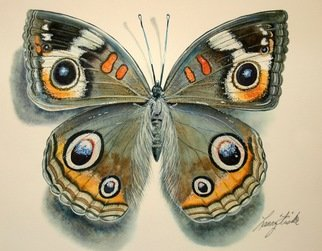 Artist: Larry Fiske - Title: The Common Buckeye Butterfly - Medium: Watercolor - Year: 2012