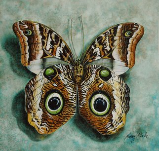 Artist: Larry Fiske - Title: The Owl Mimic Butterfly - Medium: Watercolor - Year: 2012