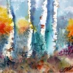Birches and Aspen By Pamela Gilbert