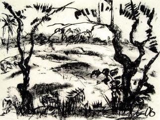 Landscape Charcoal Drawing by Andreas Loeschner Gornau Title: omewhere on the island of Boho, created in 2006