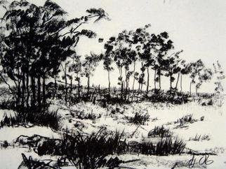 Landscape Charcoal Drawing by Andreas Loeschner Gornau Title: somewhere on the island of Bohol, created in 2006