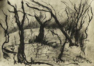 Landscape Charcoal Drawing by Andreas Loeschner Gornau Title: trees in south germany, created in 2014