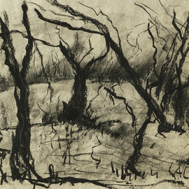 Andreas Loeschner Gornau Artwork trees in south germany, 2014 Charcoal Drawing, Landscape
