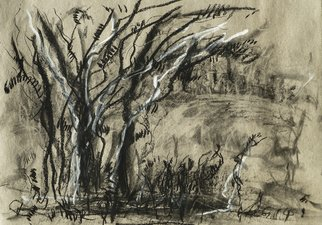 Andreas Loeschner Gornau Artwork trees in south germany, 2014 Charcoal Drawing, Trees